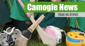 Camogie Notes